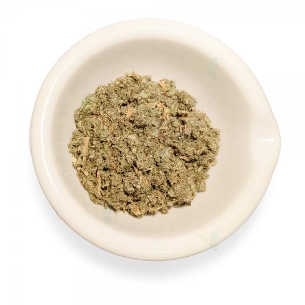 Cynarae scolymi folium concisum - Artischockenblatt geschnitten