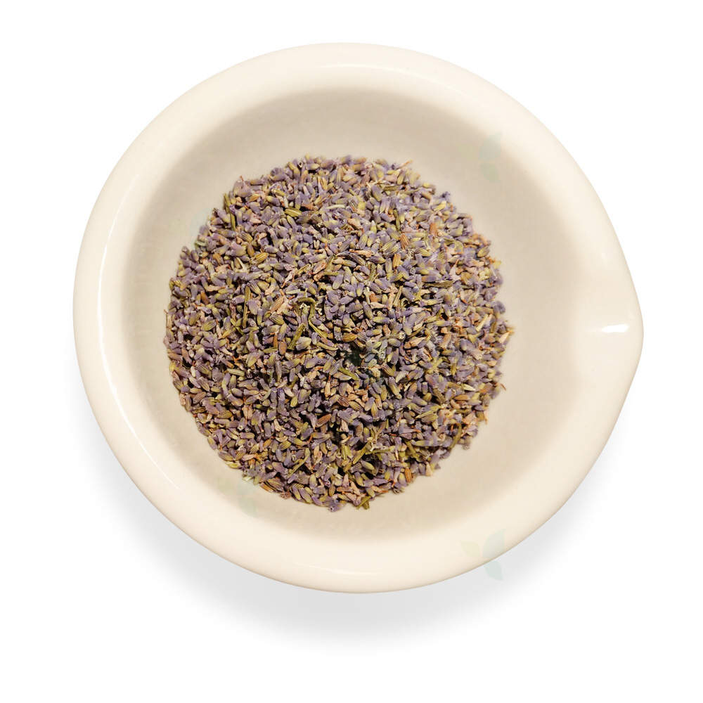 Lavendulae flos electus - Lavendelblüte erlesen