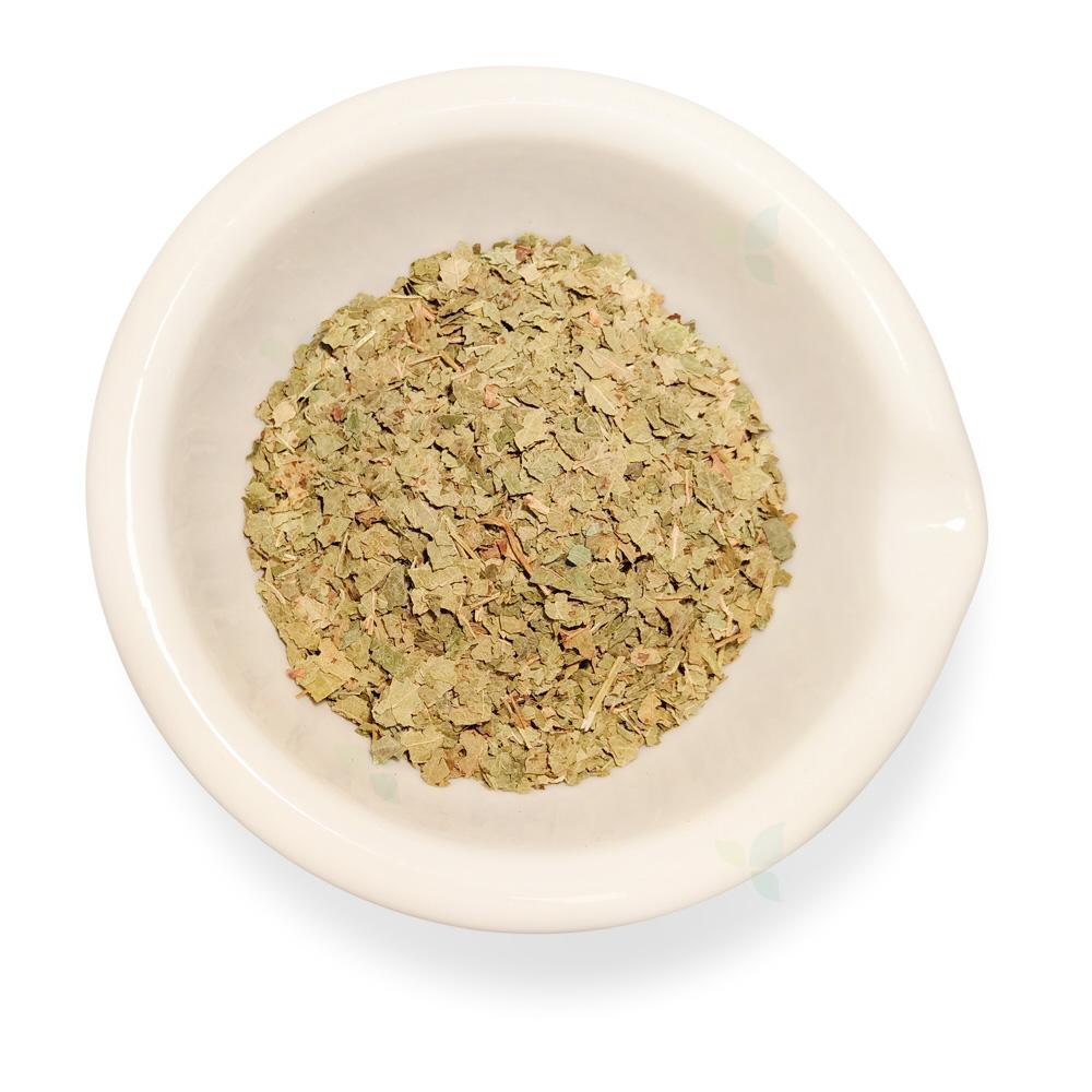 Ribis nigri folium concisa  - Johannisbeerblatt geschnitten
