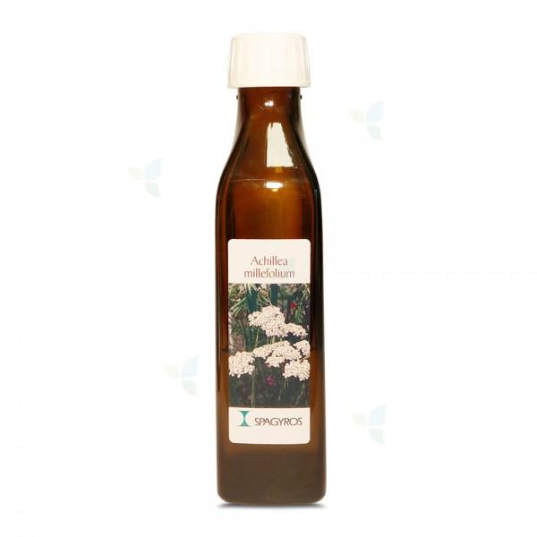 Achillea millefolium - Schafgarbe - Spagyrik