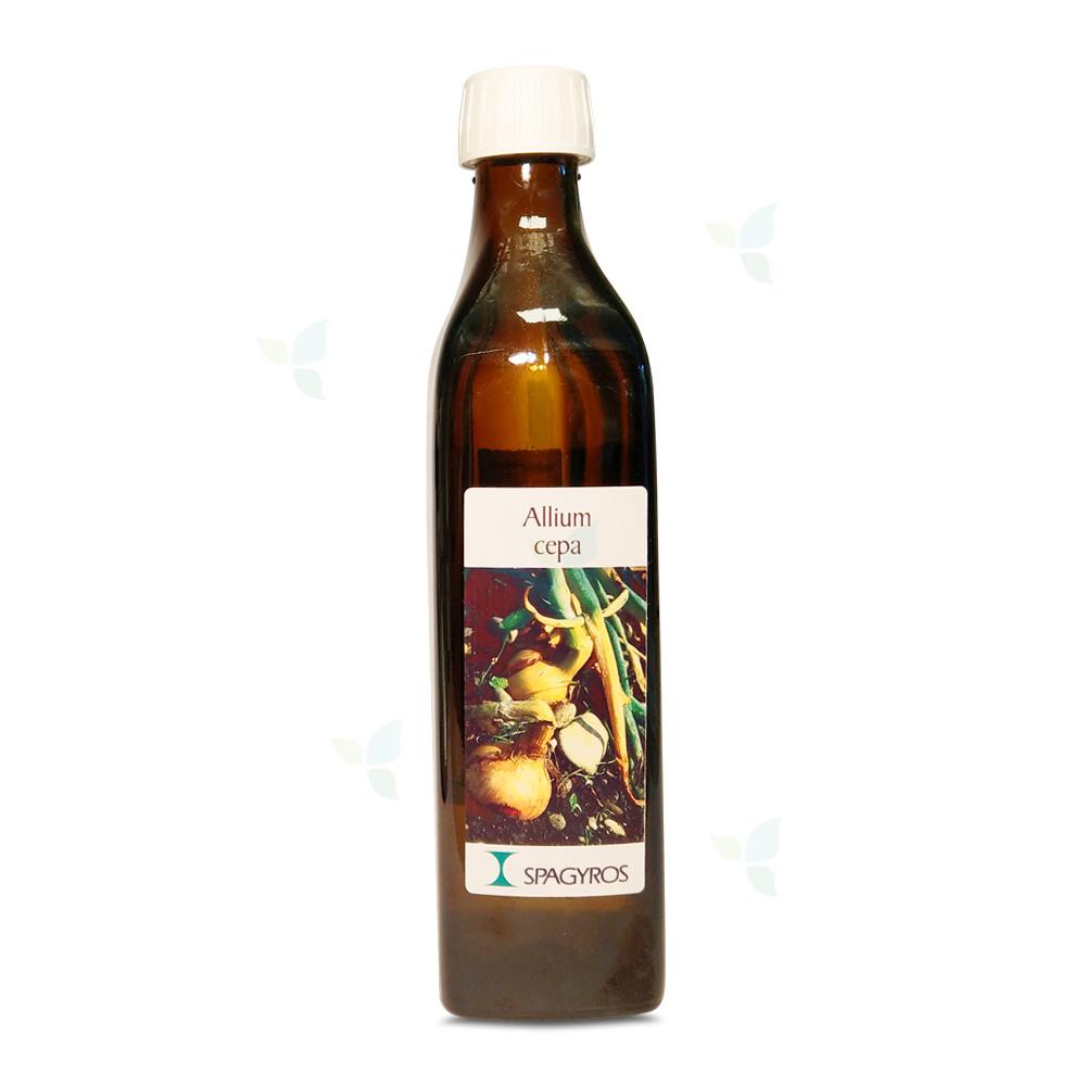 Allium Cepa - Küchenzwiebel - 50ml