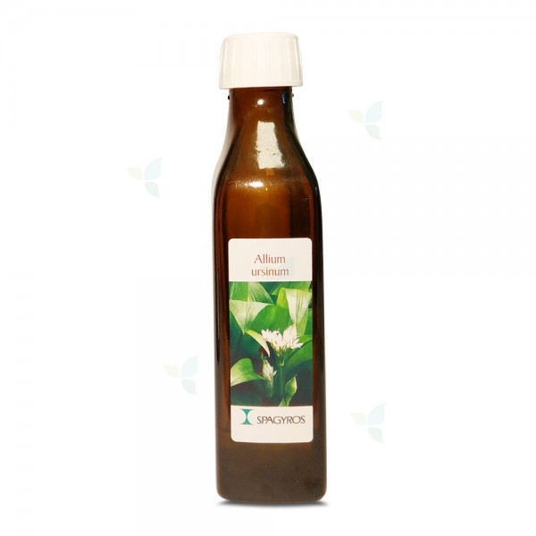 Allium ursinum - Bärlauch - 50ml
