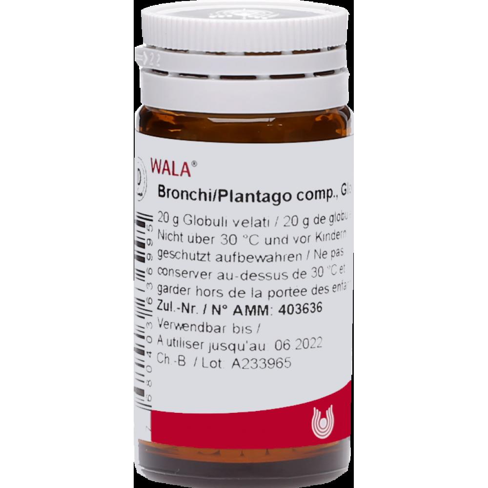 WALA Bronchi/Plantago comp Glob Fl 20 g