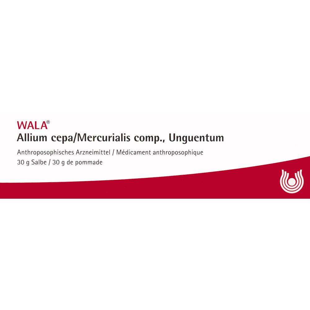 WALA Allium cepa/Mercurialis comp Salbe Tb 30 g